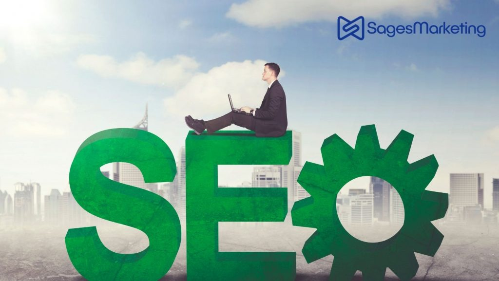 Learn Why Only 44% of Businesses Invest in SEO